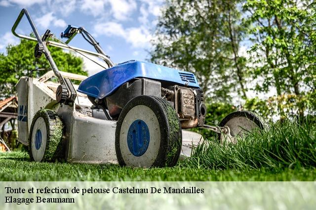 Tonte et refection de pelouse  castelnau-de-mandailles-12500 Elagage Beaumann