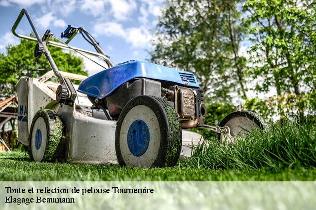 Tonte et refection de pelouse  tournemire-12250 Elagage Beaumann